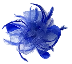 Fascinators & Hair Accessories