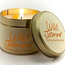 Wild Jasmin Tinned Candle